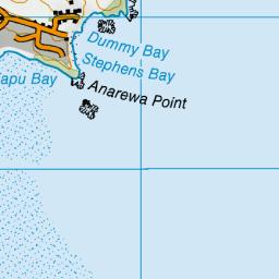 Dummy Bay Tasman Nz Topo Map